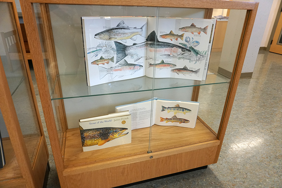 Fly fishing books open to illustrated pages.