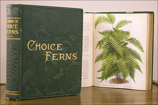 Book cover titled Choice ferns, plus image of fern showing in background
