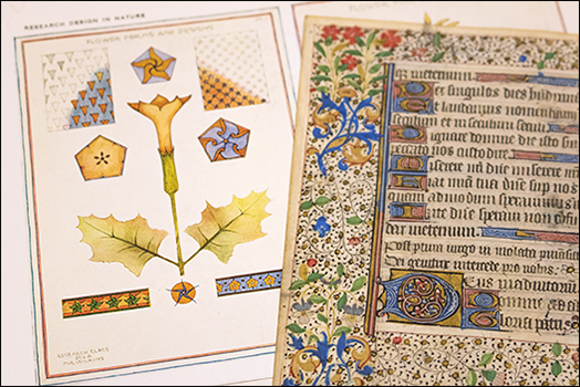 illustrated page from one book, and a medieval manuscript fragment