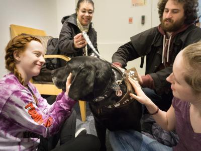Students visiting with 'Canines and Cats on Campus' dog and human volunteers