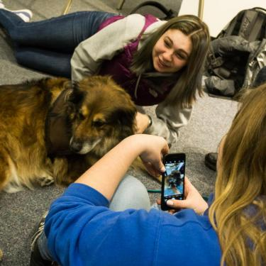 students visiting with a dog from the 'Canines & Cats on Campus' program