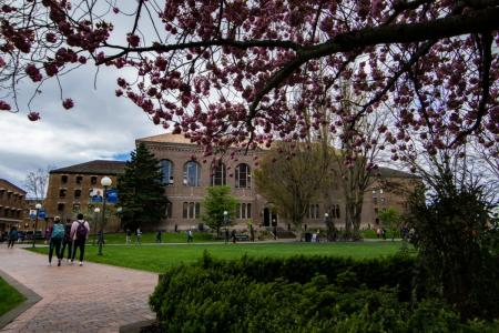 Photo of the exterior of Wilson Library from a distance with a tree in blossom in the foreground
